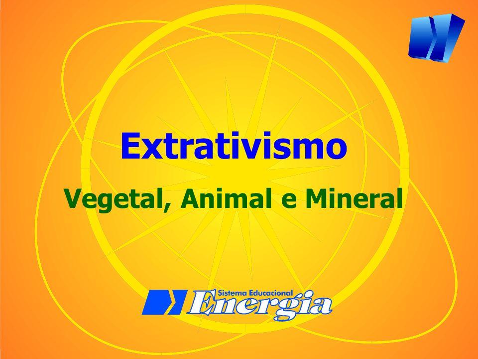 Vegetal, Animal e Mineral