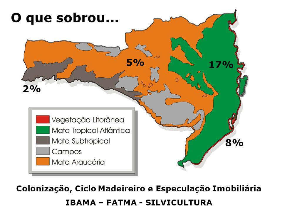 O que sobrou... 5% 17% 2% 8% Colonização, Ciclo Madeireiro e Especulação Imobiliária.
