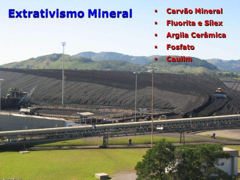 Extrativismo Mineral Carvão Mineral Fluorita e Sílex Argila Cerâmica