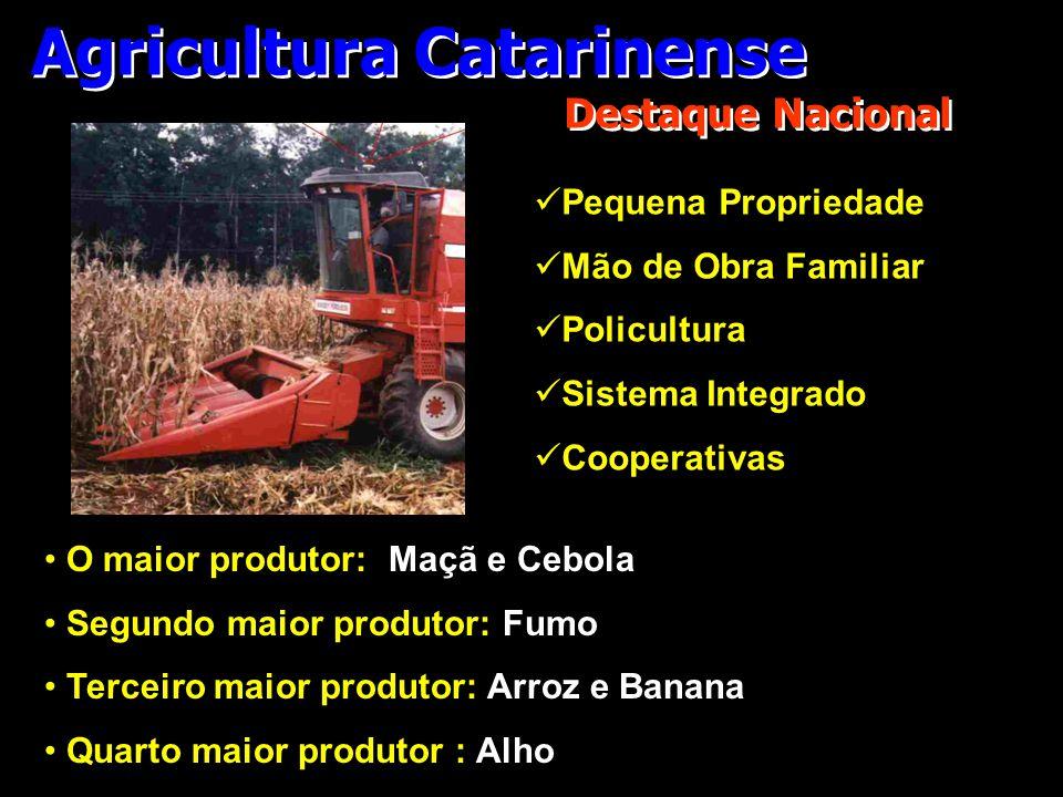 Agricultura Catarinense