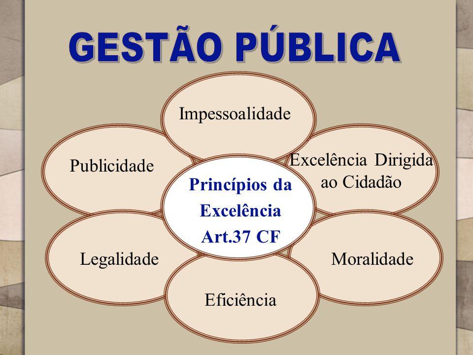 Excelência Dirigida ao Cidadão