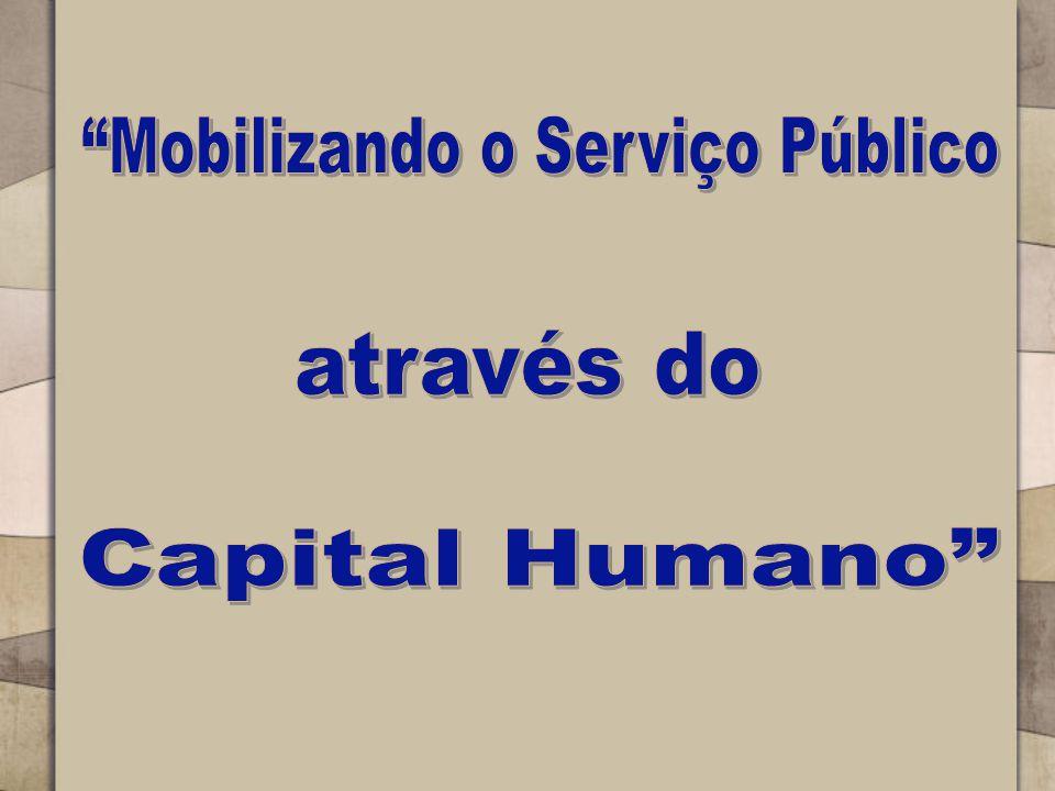 Mobilizando o Serviço Público