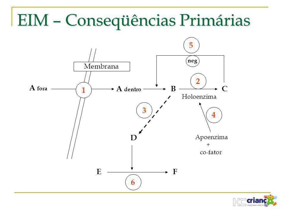 EIM – Conseqüências Primárias