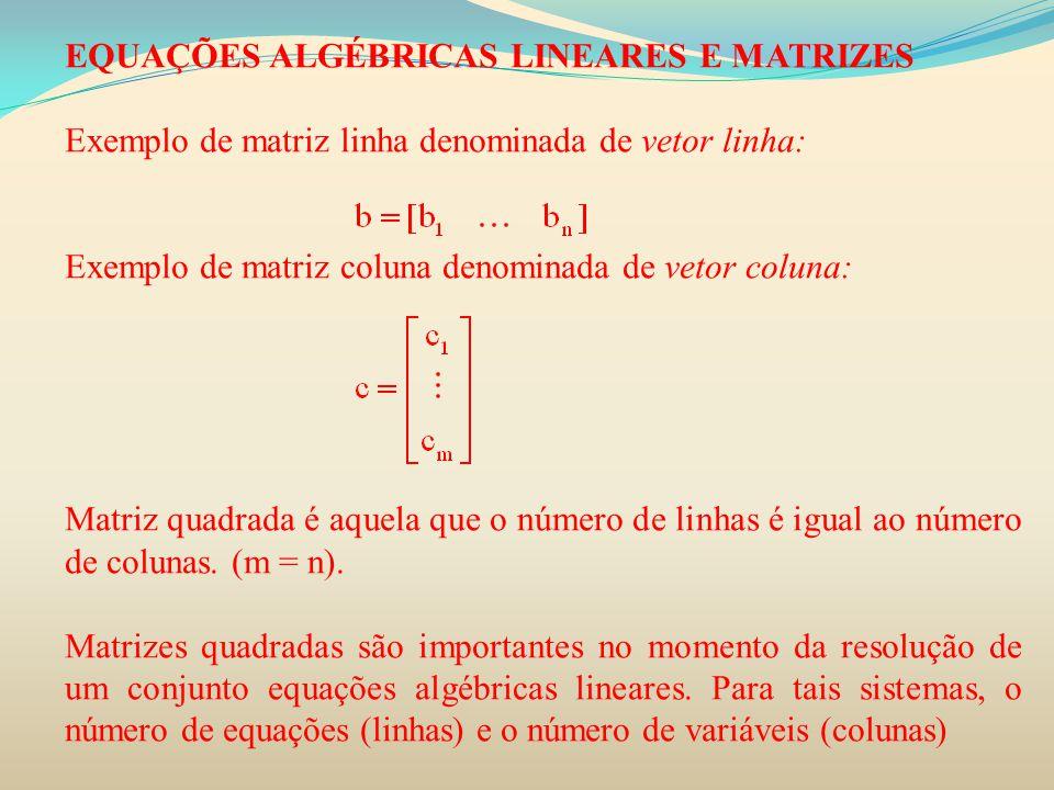 EQUAÇÕES ALGÉBRICAS LINEARES E MATRIZES