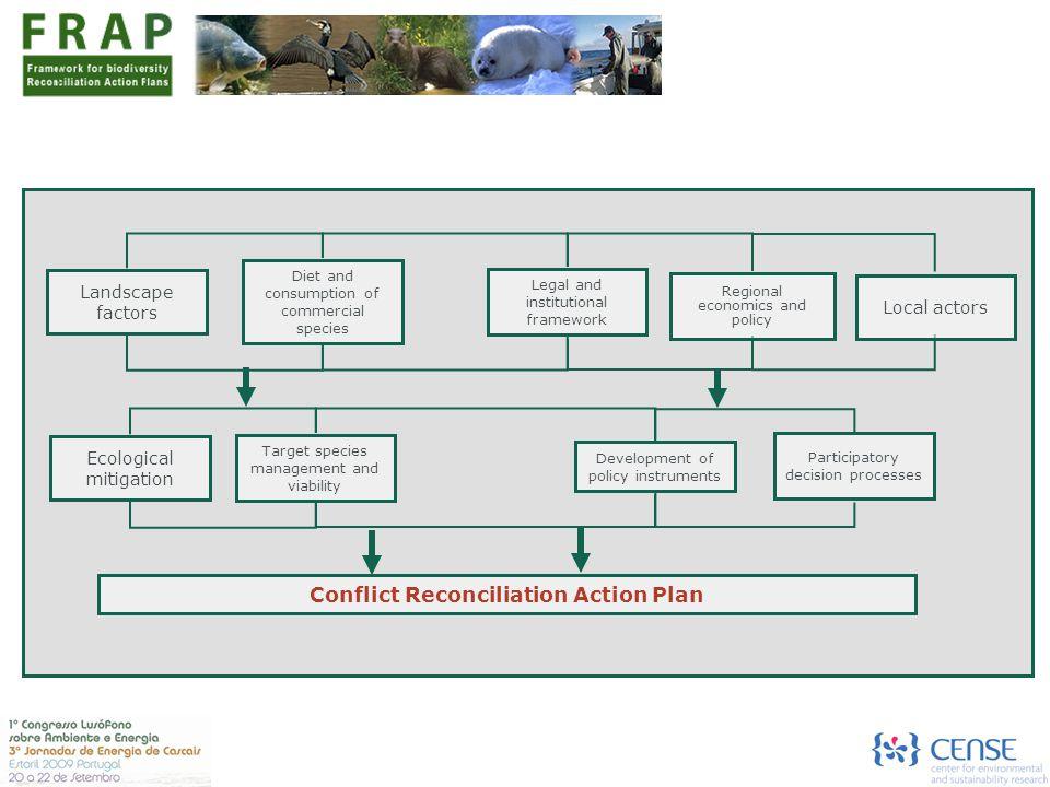 Conflict Reconciliation Action Plan