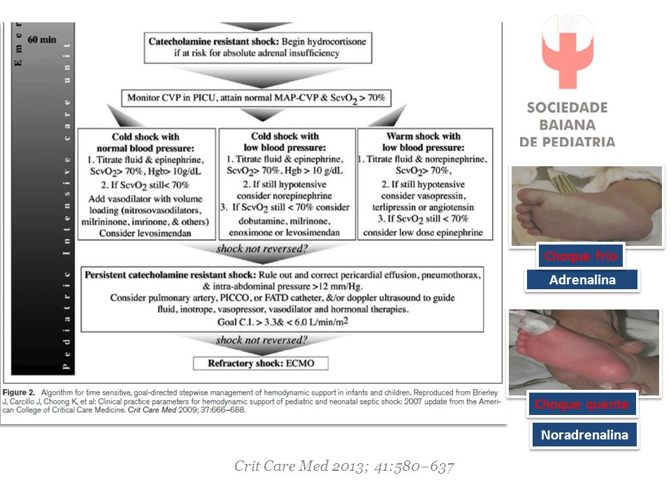 Choque frio Adrenalina Noradrenalina Choque quente Crit Care Med 2013; 41:580–637
