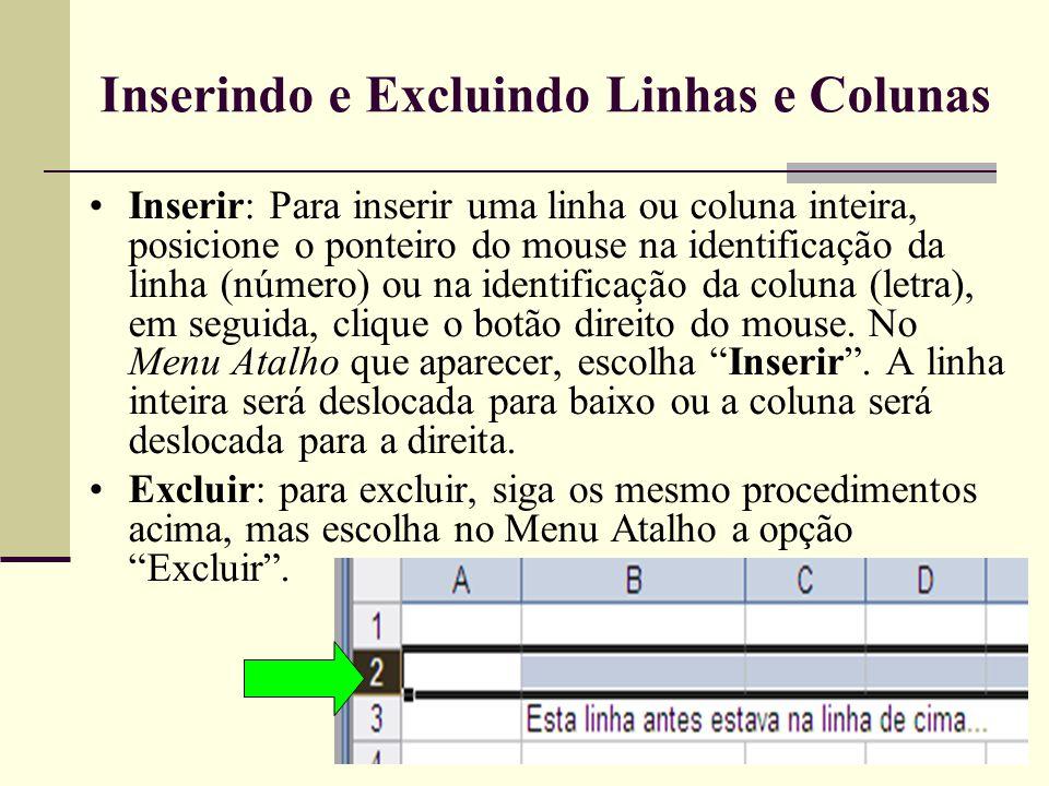 Inserindo e Excluindo Linhas e Colunas