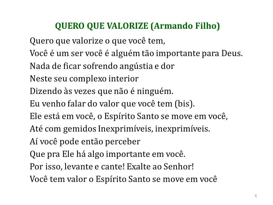 QUERO QUE VALORIZE (Armando Filho)