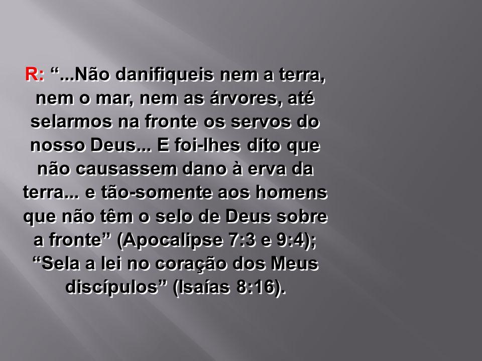 R: ...Não danifiqueis nem a terra, nem o mar, nem as árvores, até selarmos na fronte os servos do nosso Deus...