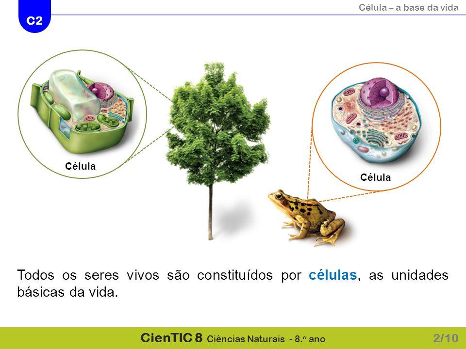 Célula Célula Todos os seres vivos são constituídos por células, as unidades básicas da vida. 2/10
