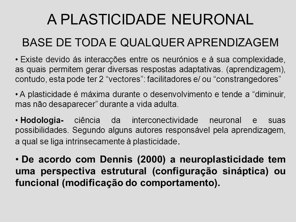 A PLASTICIDADE NEURONAL