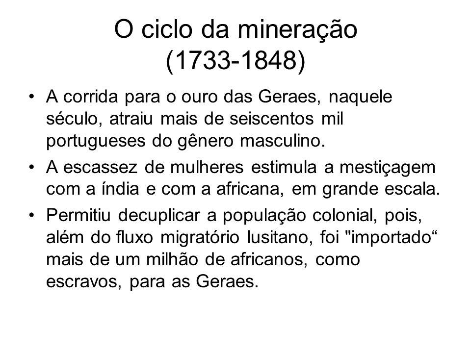 O ciclo da mineração (1733-1848)