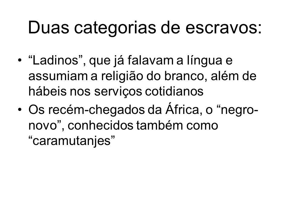 Duas categorias de escravos: