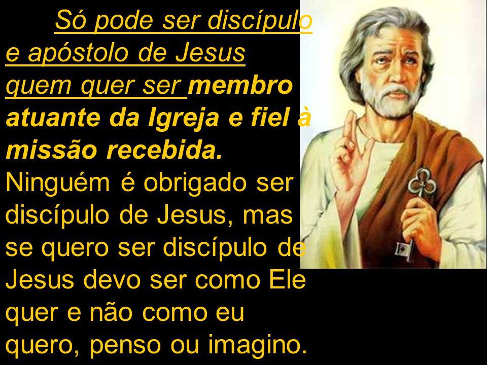 Só pode ser discípulo e apóstolo de Jesus quem quer ser membro atuante da Igreja e fiel à missão recebida.