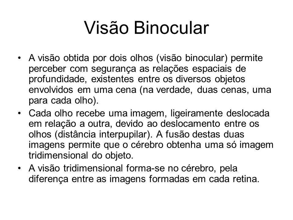 Visão Binocular
