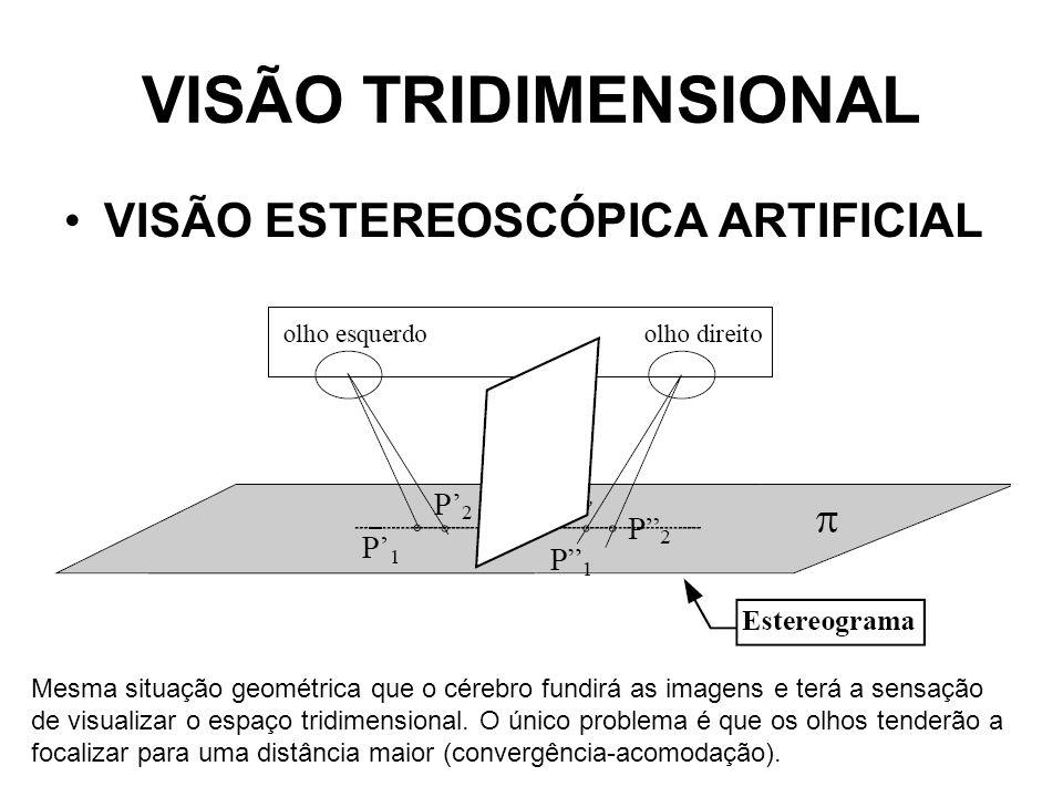 VISÃO TRIDIMENSIONAL VISÃO ESTEREOSCÓPICA ARTIFICIAL