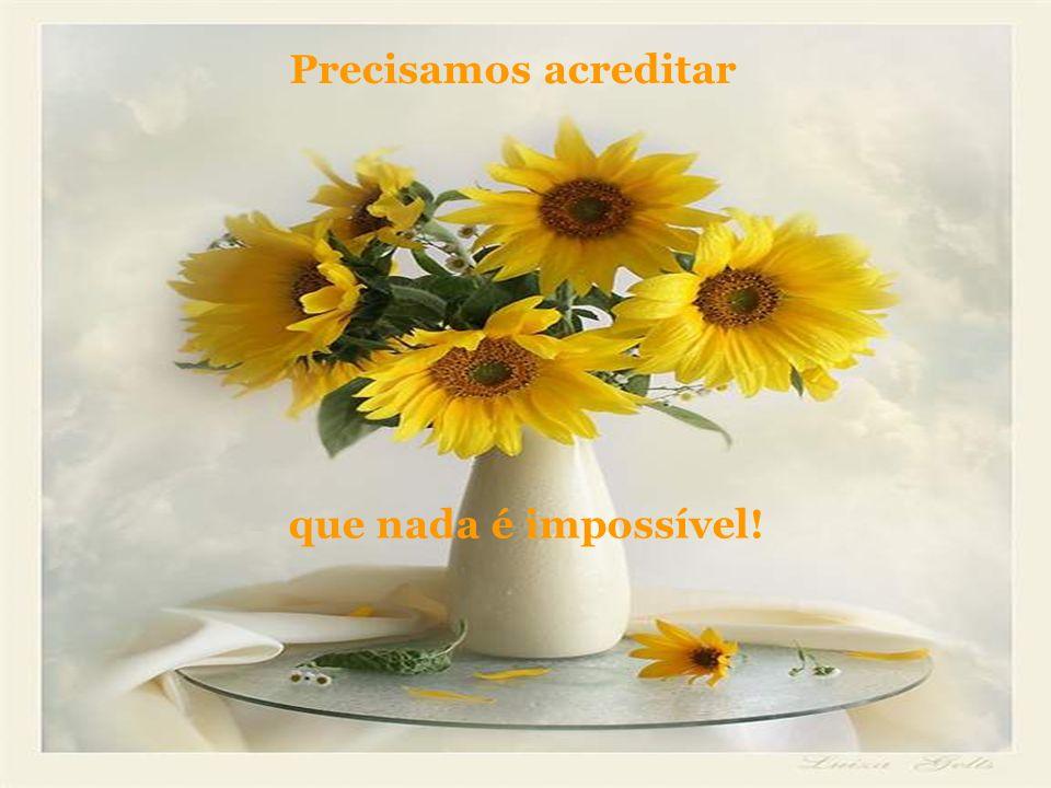 Precisamos acreditar que nada é impossível!