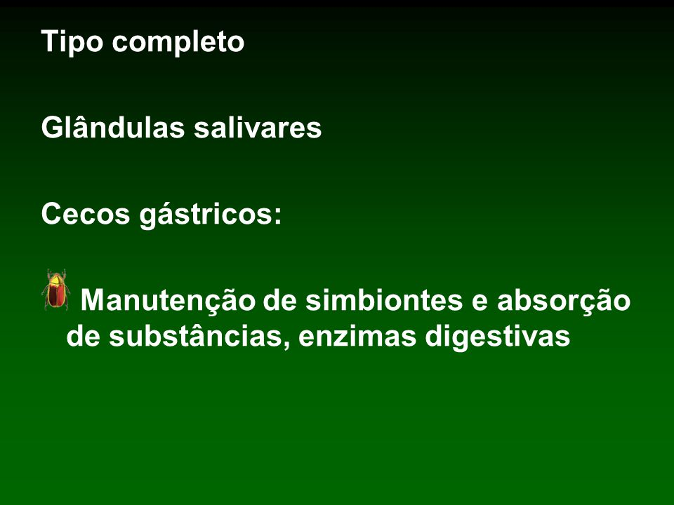 Tipo completo Glândulas salivares.