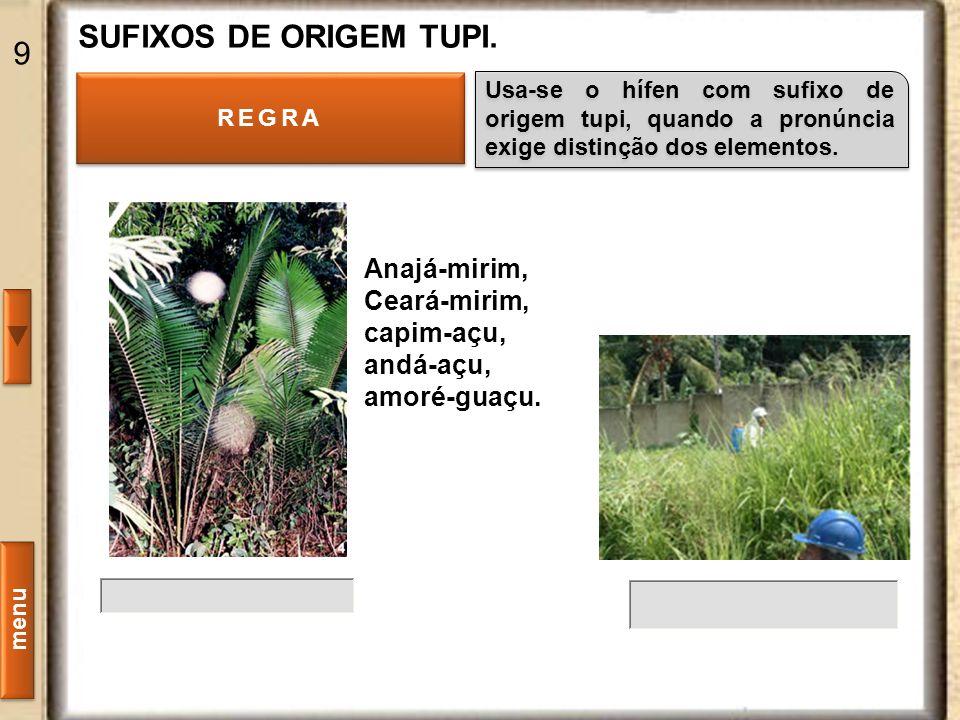 SUFIXOS DE ORIGEM TUPI. 9 Anajá-mirim, Ceará-mirim, capim-açu,