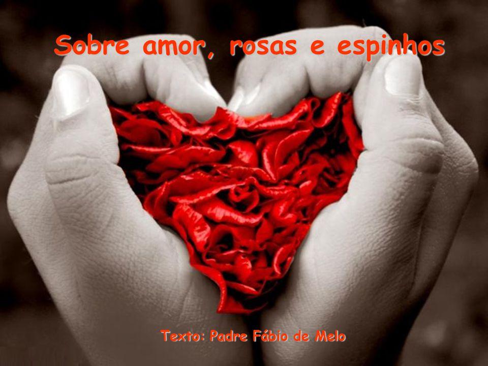 Sobre amor, rosas e espinhos