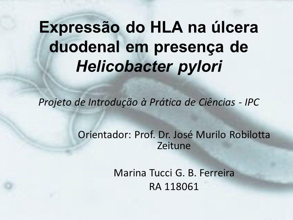 Expressão do HLA na úlcera duodenal em presença de Helicobacter pylori Projeto de Introdução à Prática de Ciências - IPC