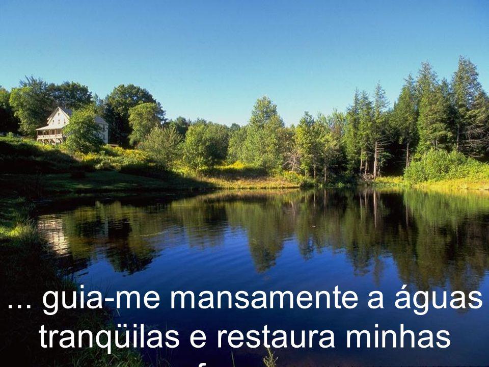 ... guia-me mansamente a águas tranqüilas e restaura minhas forças.