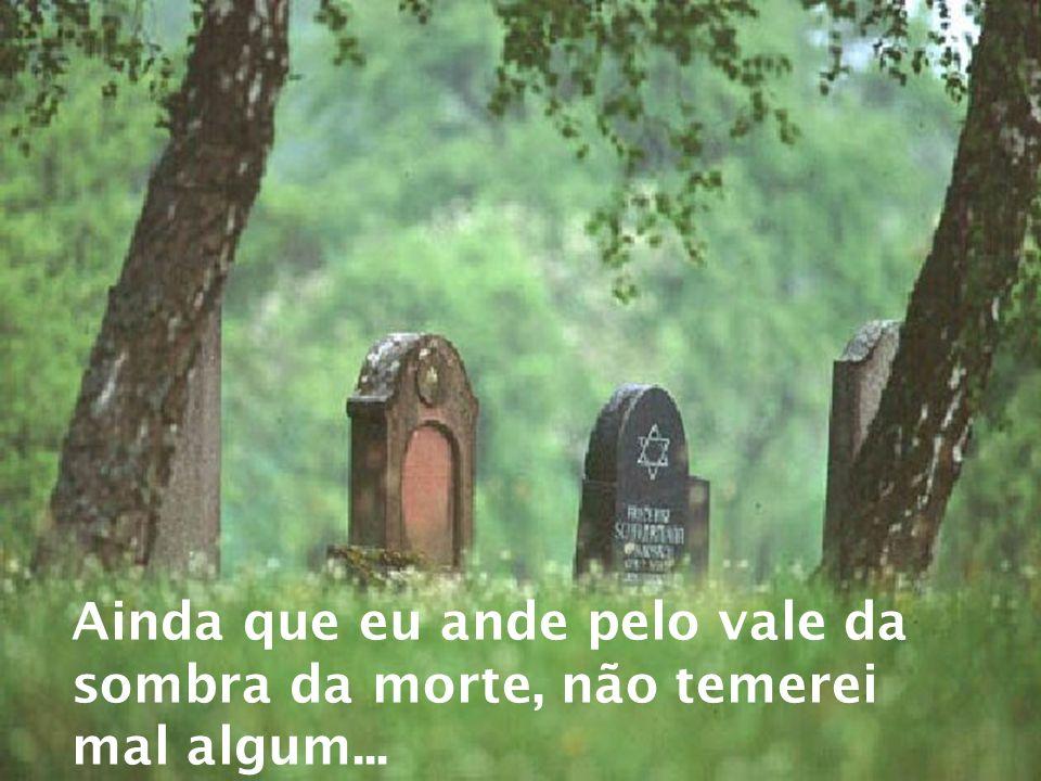 Ainda que eu ande pelo vale da sombra da morte, não temerei mal algum...