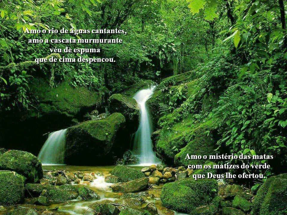 Amo o rio de águas cantantes, amo a cascata murmurante véu de espuma