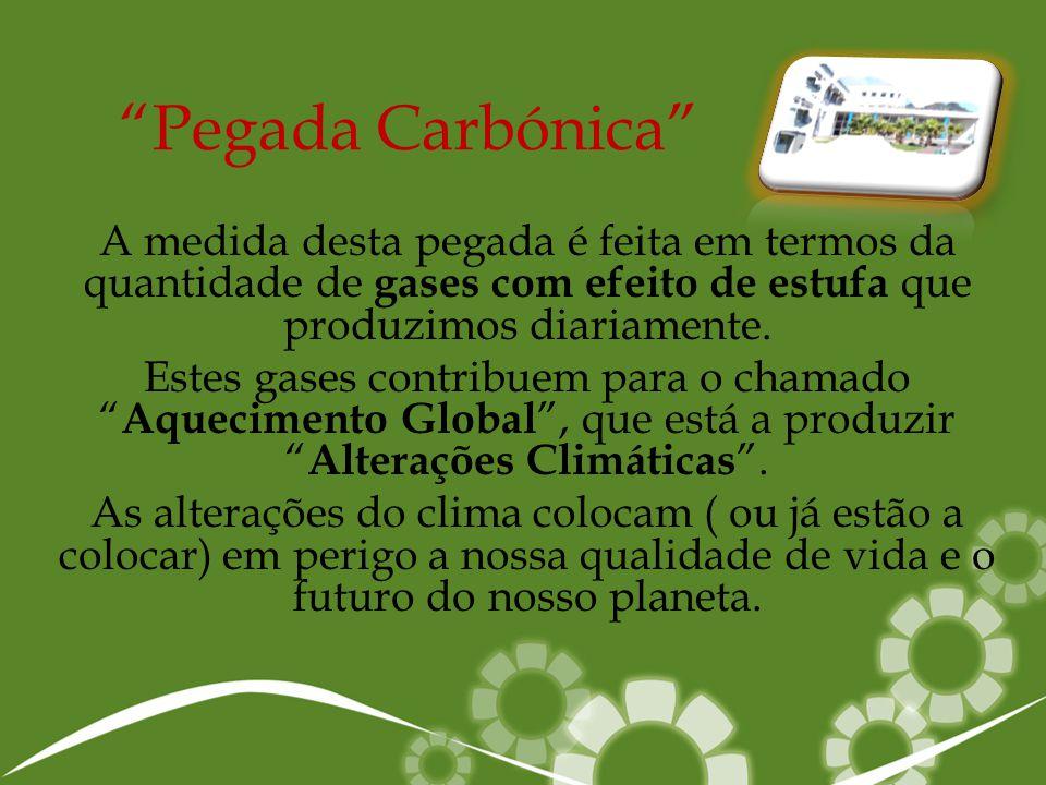 Pegada Carbónica A medida desta pegada é feita em termos da quantidade de gases com efeito de estufa que produzimos diariamente.