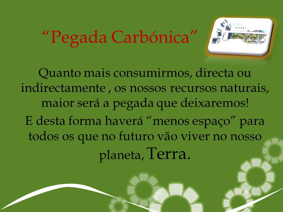 Pegada Carbónica Quanto mais consumirmos, directa ou indirectamente , os nossos recursos naturais, maior será a pegada que deixaremos!