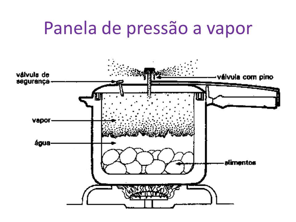 Panela de pressão a vapor