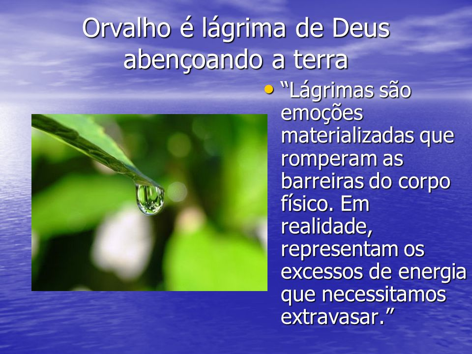 Orvalho é lágrima de Deus abençoando a terra