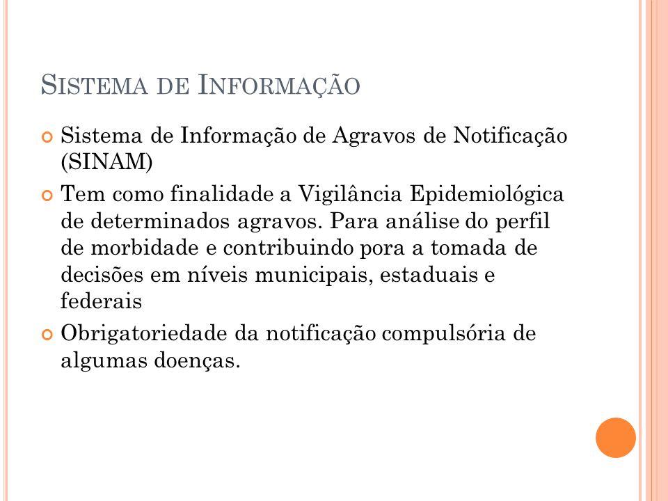 Sistema de Informação Sistema de Informação de Agravos de Notificação (SINAM)