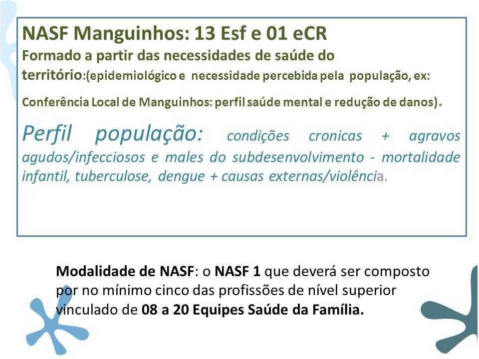 NASF Manguinhos: 13 Esf e 01 eCR