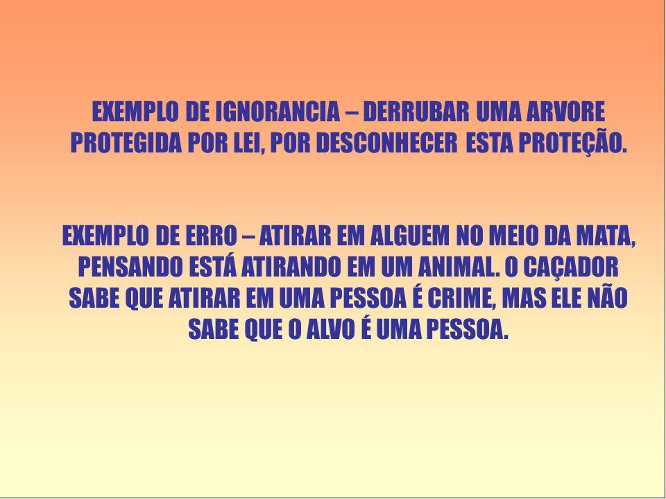 EXEMPLO DE IGNORANCIA – DERRUBAR UMA ARVORE PROTEGIDA POR LEI, POR DESCONHECER ESTA PROTEÇÃO.