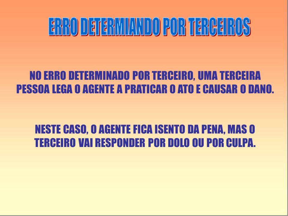 ERRO DETERMIANDO POR TERCEIROS