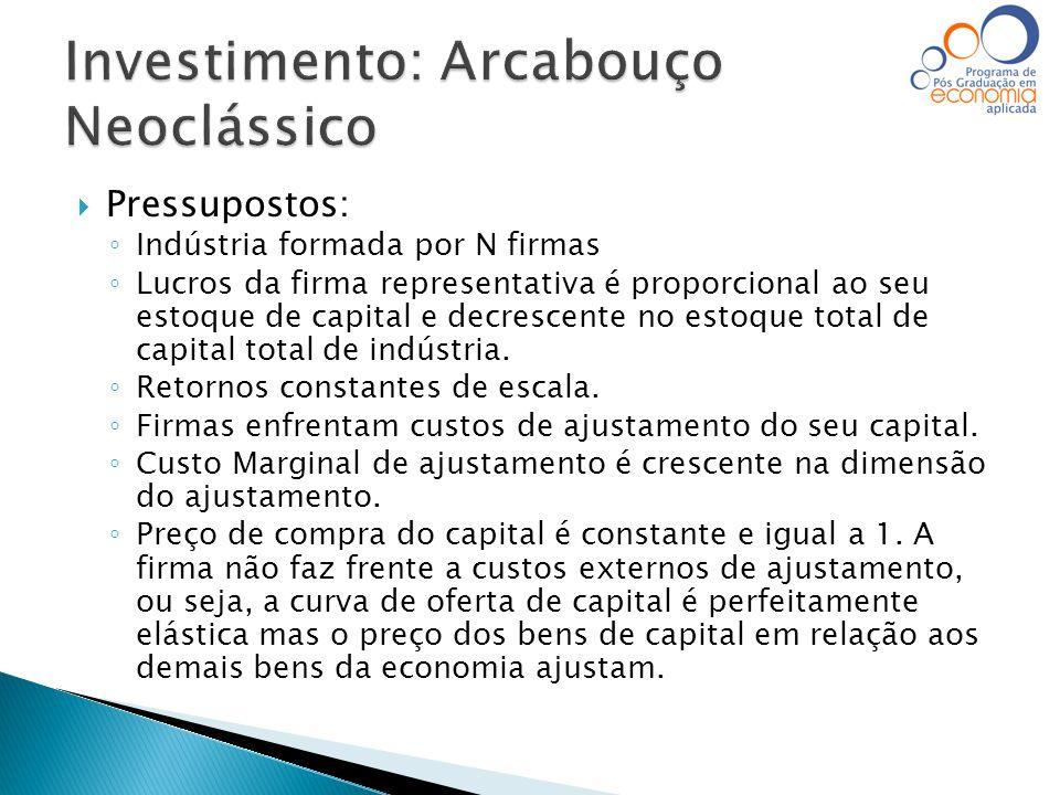 Investimento: Arcabouço Neoclássico