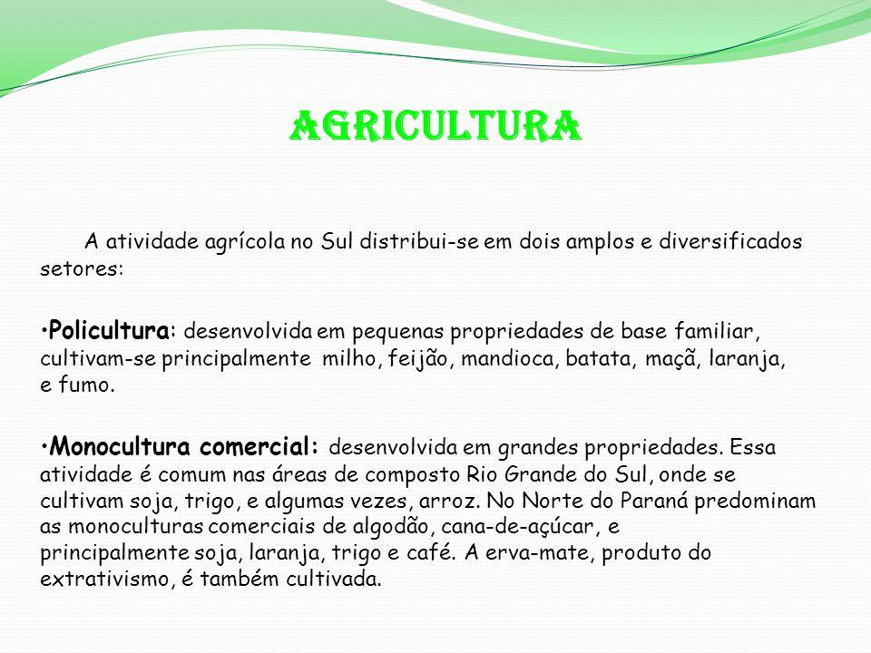 AGRICULTURA A atividade agrícola no Sul distribui-se em dois amplos e diversificados setores: