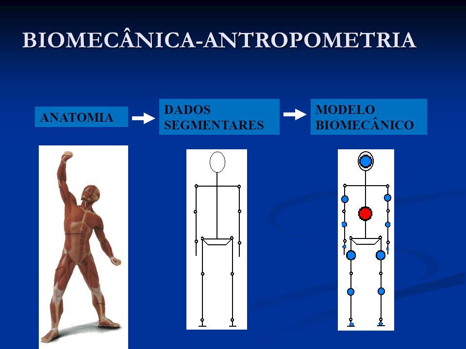 BIOMECÂNICA-ANTROPOMETRIA