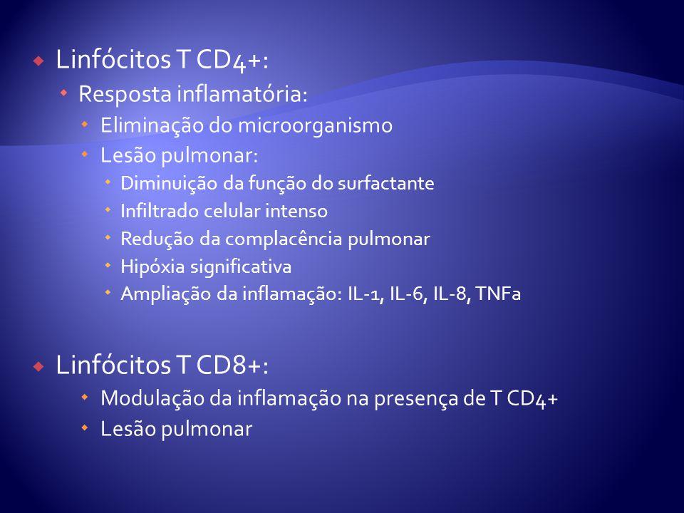 Linfócitos T CD4+: Linfócitos T CD8+: Resposta inflamatória: