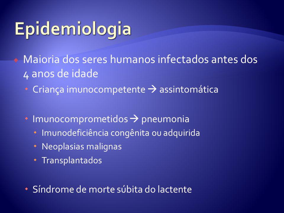 Epidemiologia Maioria dos seres humanos infectados antes dos 4 anos de idade. Criança imunocompetente  assintomática.