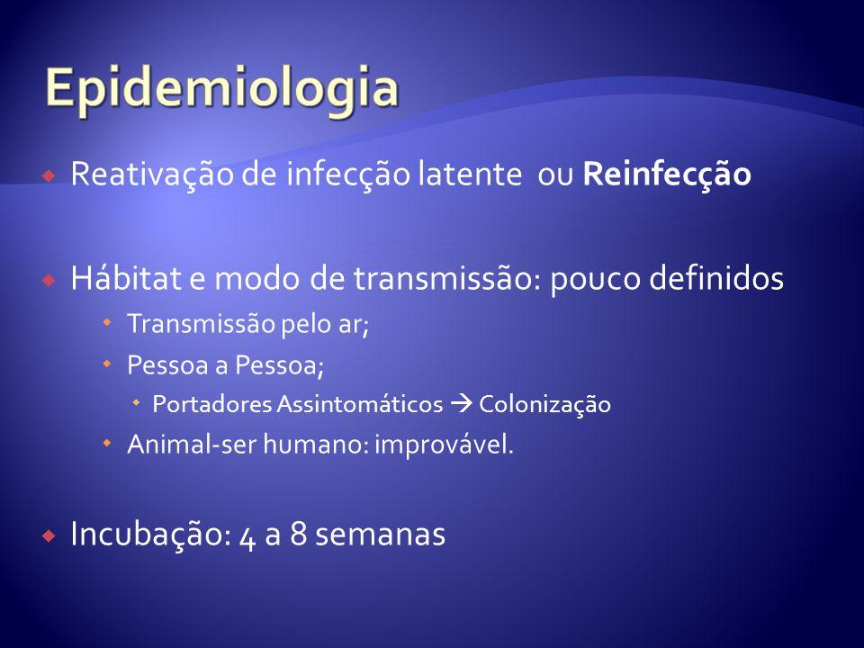Epidemiologia Reativação de infecção latente ou Reinfecção
