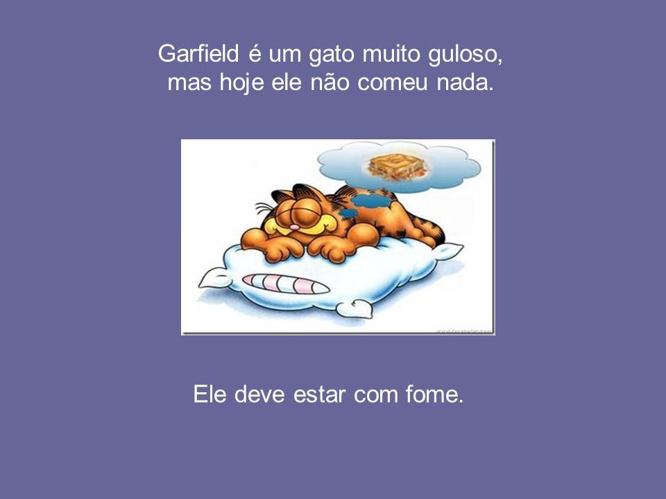 Garfield é um gato muito guloso, mas hoje ele não comeu nada.