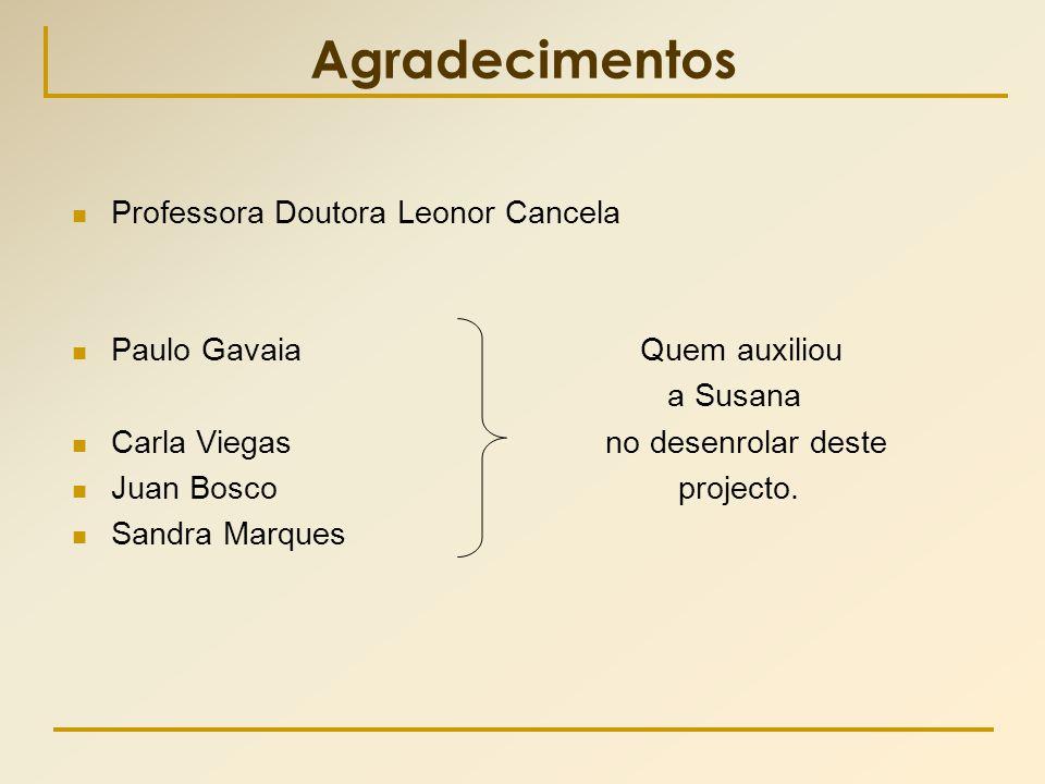 Agradecimentos Professora Doutora Leonor Cancela