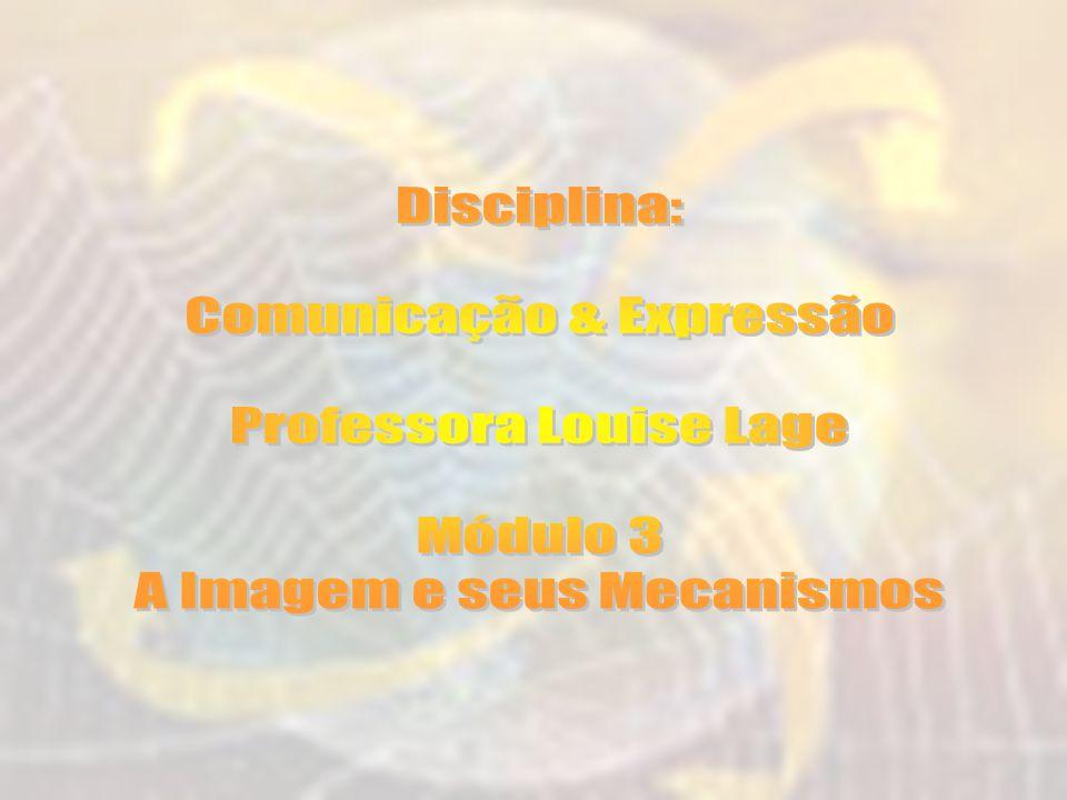 Comunicação & Expressão Professora Louise Lage Módulo 3