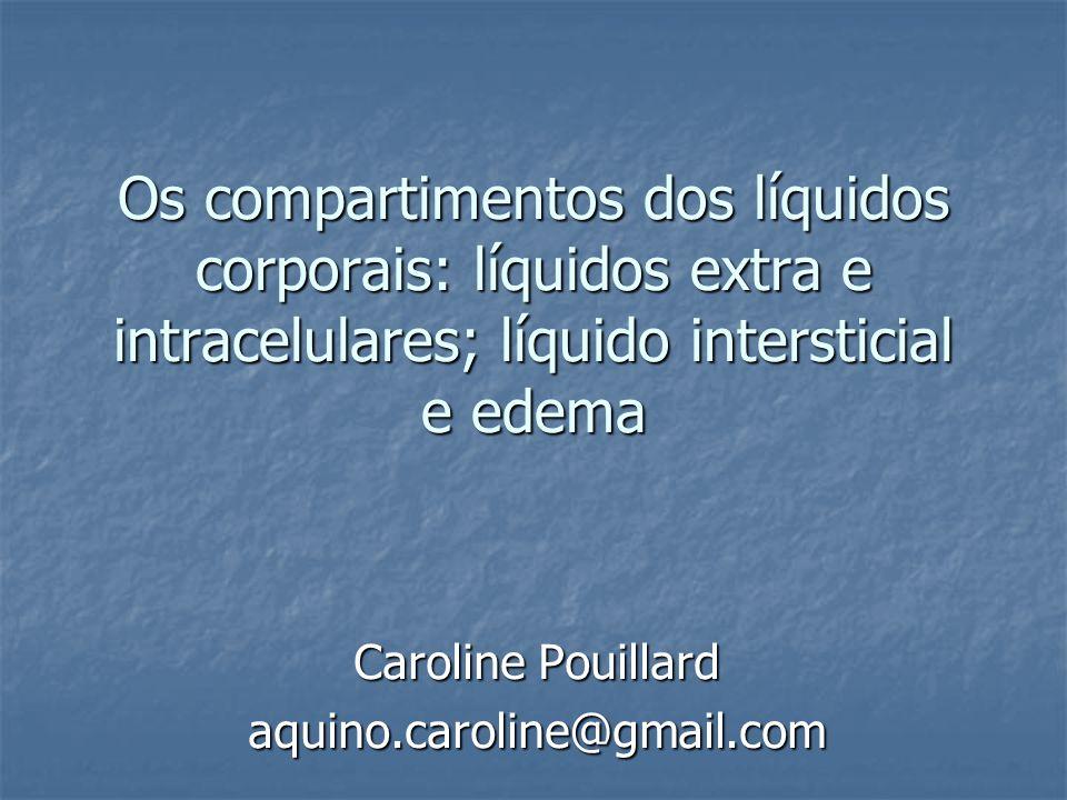 Caroline Pouillard aquino.caroline@gmail.com