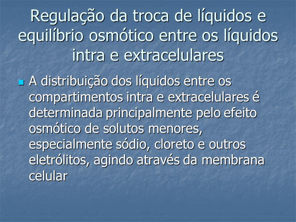 Regulação da troca de líquidos e equilíbrio osmótico entre os líquidos intra e extracelulares