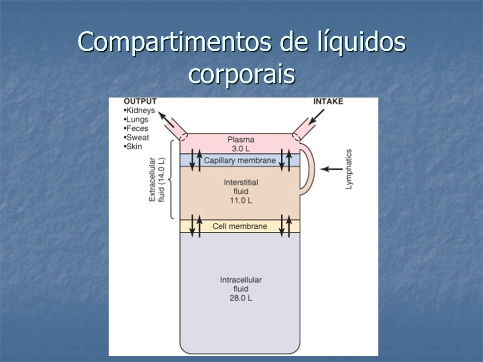 Compartimentos de líquidos corporais