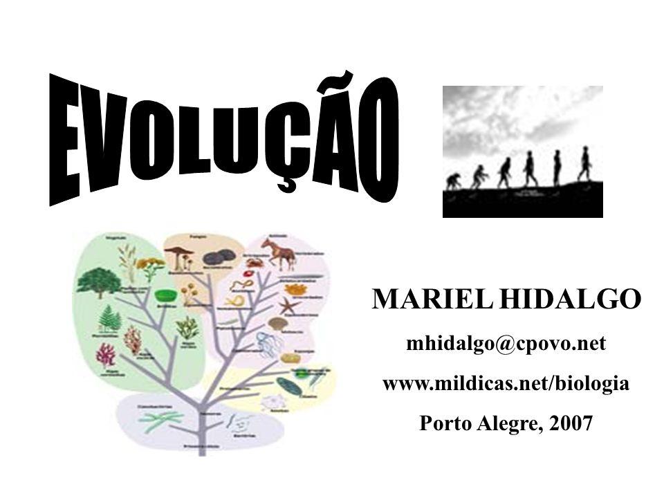 EVOLUÇÃO MARIEL HIDALGO mhidalgo@cpovo.net www.mildicas.net/biologia