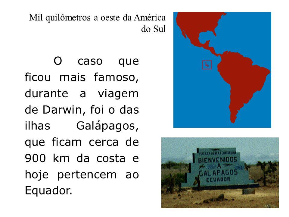 Mil quilômetros a oeste da América do Sul
